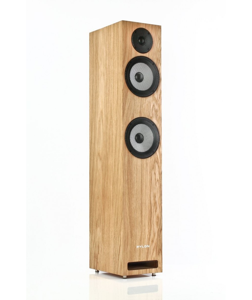 PYLON Audio Ruby 25