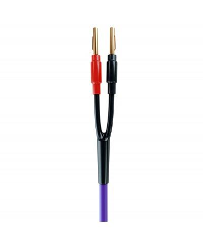 Melodika Purple Rain 2x1,5mm2 kolonėlių kabelis su antgaliais - Kolonėlių kabeliai su antgaliais