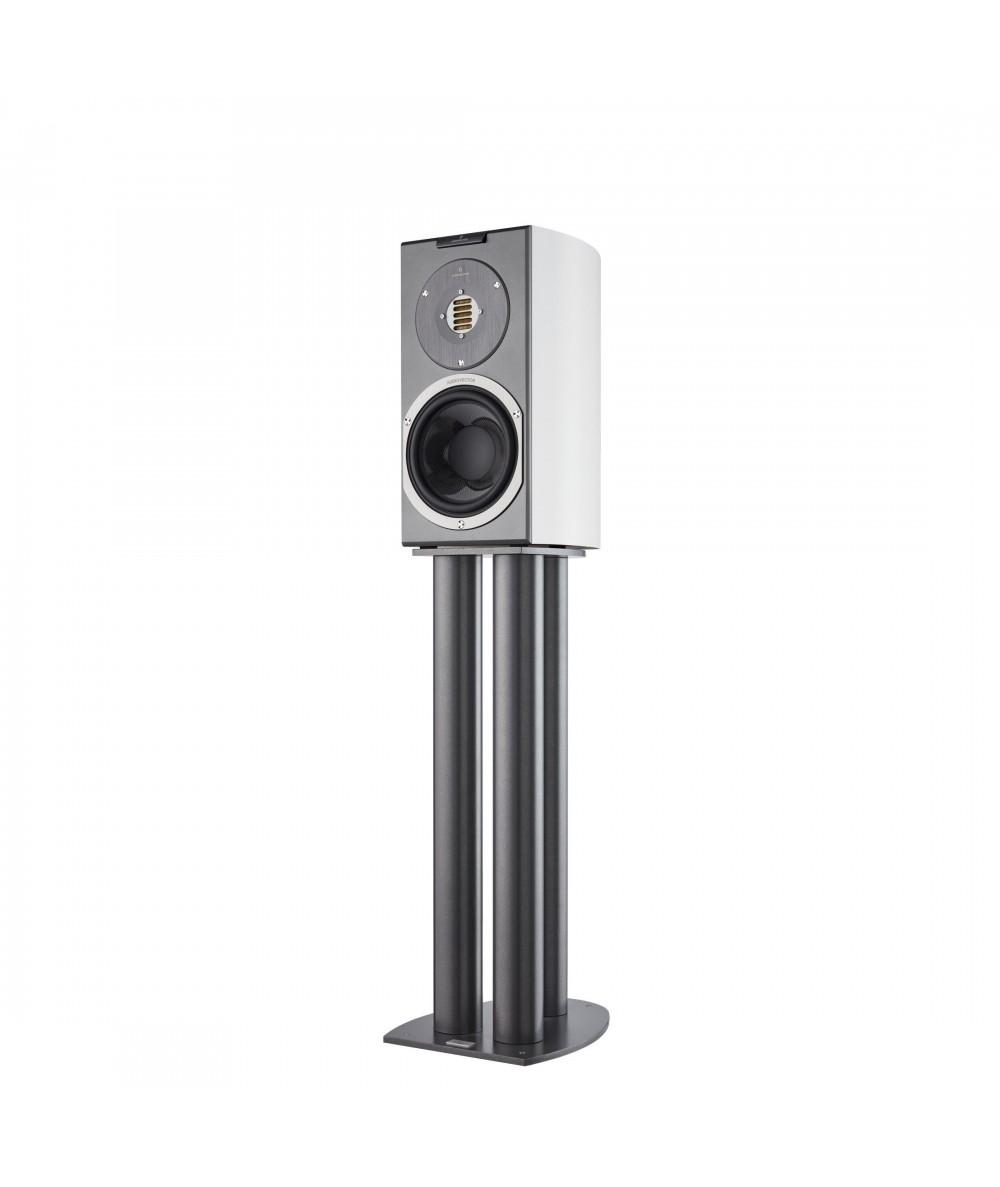 Audiovector R1 Avantgarde - Lentyninės kolonėlės