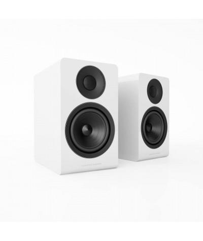 Acoustic Energy AE300 - Lentyninės kolonėlės