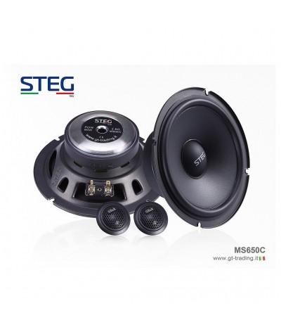 STEG MS 650C komponentiniai...