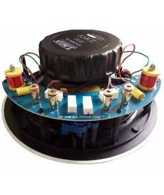 TAGA TCW-880R SM montuojama į lubas garso kolonėlė